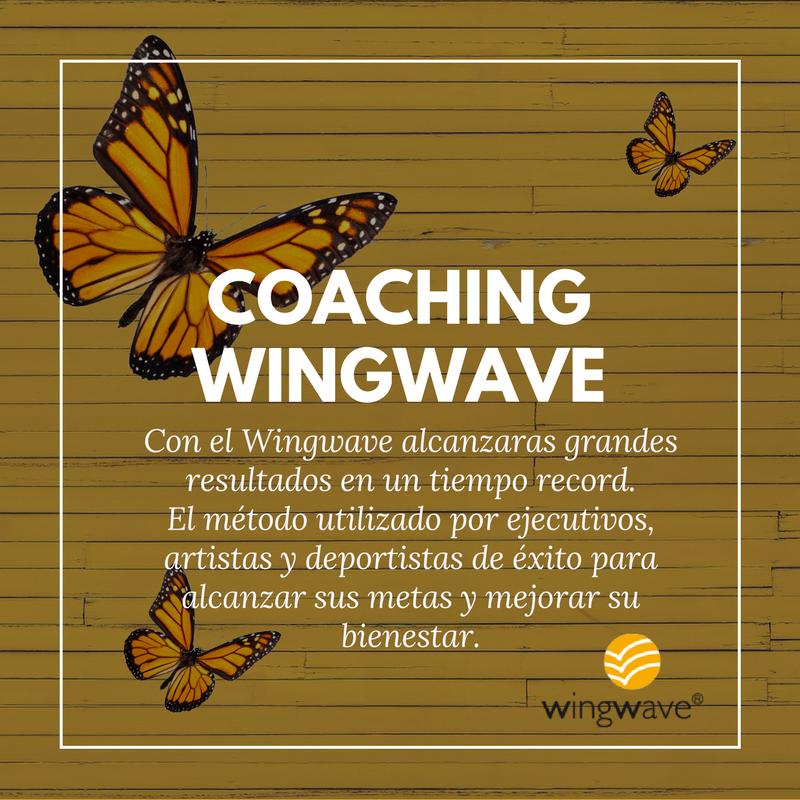 Servicios AAM_Wingwave